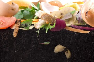 compost types, vegetable composting